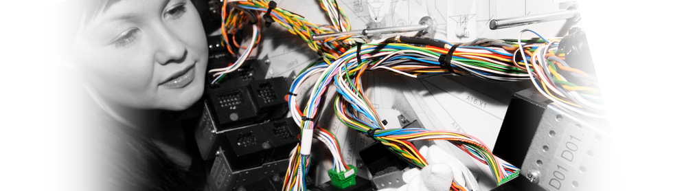 image 1.php_ more union busting in mexico by pkc power in a union pkc wire harness at mifinder.co
